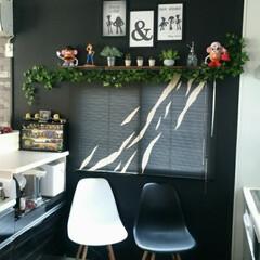トイストーリー/フェイクグリーン/ブラインド/黒壁/DIY/ダイソー/... キッチンの壁を白から黒に✨ やっぱり黒壁…