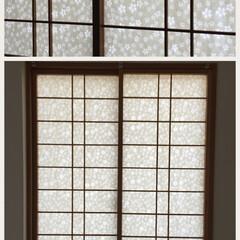 桜/障子の張り替え/ヨシ紙/鵜殿/淀川 障子の張替実例 マンションリフォーム  …