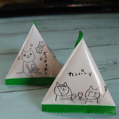 お菓子/世相/イラスト/たい焼き/カラメルプディング味/アイス (*'ー'*)ノオハヨウゴザイマス☀…(1枚目)