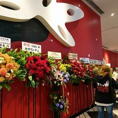 C&K/ライブ/東京ドームシティホール 昨夜はライブへお出かけをしてきました💕 …(2枚目)