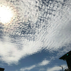 太陽/暑さ戻る/うろこ雲 只今、室内31℃😱💦 今日の暑さは夏に逆…