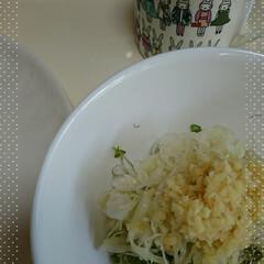 血管年齢/酢生姜/酢キャベツ/朝食 毎朝食べる、酢キャベツ&酢生姜&ブロッコ…