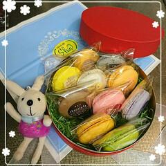 誕生日/小さなうさぎ/ケーキ/マカロン 昨日 私の好きなお店の💖大好きなマカロン…