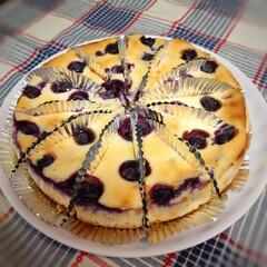 チーズケーキ/ポジション/ハル (๓´˘`๓)こんばんは♪ 猛暑が続きま…