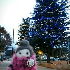 紅子さん/イルミネーション/プチイルミネーション 今日はこの冬一番寒い日中だったのでは!?…