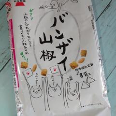 お菓子/世相/イラスト/たい焼き/カラメルプディング味/アイス (*'ー'*)ノオハヨウゴザイマス☀…(4枚目)