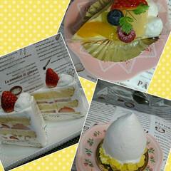 誕生日/小さなうさぎ/ケーキ/マカロン 昨日 私の好きなお店の💖大好きなマカロン…(4枚目)