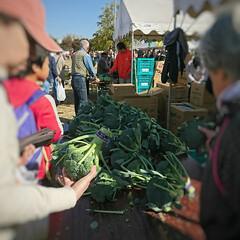 野菜/宝船/椎茸/地元産野菜 今日は朝から地元のお祭り? 楽市というイ…(5枚目)