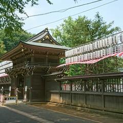 海ほうずき/出店/夏祭り/諏訪神社 もうすぐお祭り この参道には出店がたくさ…