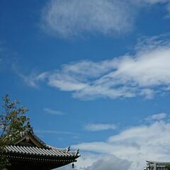 自転車/秋の空/墓参り あんまり空が綺麗だから📷パチリ♪ お墓…