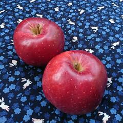 真っ赤/りんご/おすそわけ/頂き物/秋 今朝、ピンポーン♪誰!こんなに早く😱…