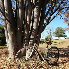 フリーパワー/自転車/買い換え/サイクリング 愛車🚲フリーパワー自転車にしました 充電…