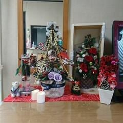 夜な夜な/飾り付け/プリザ/クリスマス 🎄クリスマス飾り 配置やっと出来ました^…(8枚目)