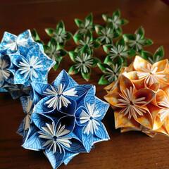 くす玉/折り紙/ミヤコワスレ/バラ/公園/藤の花/... おはようございます🎏 本格的に連休が始ま…