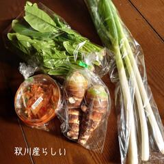 アップルパイ/🍎りんご/パイシート/新鮮/野菜 おはようございます🌄 週末冷凍庫にパイシ…(4枚目)