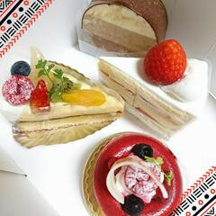 ケーキ/ホワイトデー/スイーツ/甘党大集合/お土産 ホワイトデーはいつものお店の🍰ケーキが定…