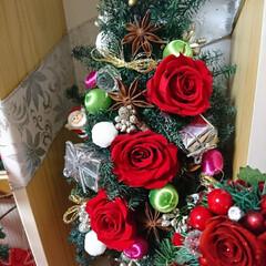 夜な夜な/飾り付け/プリザ/クリスマス 🎄クリスマス飾り 配置やっと出来ました^…