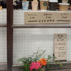 花見/桜/カフェ こんばんは🌙今日は予報どおりの曇り空そし…