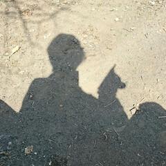 """晩ごはん/炊き込みご飯/散歩/公園/ハル/わたしのごはん 昨夜はウララさんからの""""こんぶ ほたて""""…(5枚目)"""