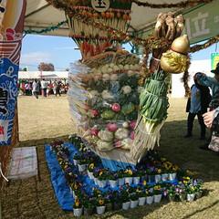 野菜/宝船/椎茸/地元産野菜 今日は朝から地元のお祭り? 楽市というイ…(8枚目)