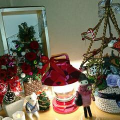 ドタバタ クリスマス/ライトアップ/X'mas 今年のX'mas🎄も終わります 片付け前…