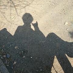 """晩ごはん/炊き込みご飯/散歩/公園/ハル/わたしのごはん 昨夜はウララさんからの""""こんぶ ほたて""""…(4枚目)"""