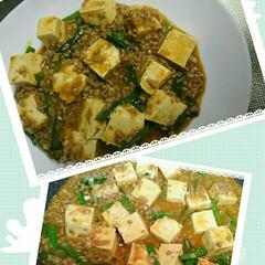 会合/中華料理/麻婆豆腐/おうちごはん 今夜は麻婆豆腐😊 私は出かけるので食べら…