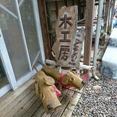 木工房/こどもの森/昭和記念公園 公園内の、こどもの森木工房に知人がボラン…