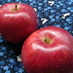 真っ赤/りんご/おすそわけ/頂き物/秋 今朝、ピンポーン♪誰!こんなに早く😱…(2枚目)