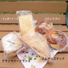 売店/病院/ひまわり/パン屋さん/朝ご飯 おはようございます⛅ 昨日の健康診断の帰…(1枚目)