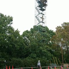 高見台/コスモス/ワンちゃん/準備/箱根駅伝予選会 明日は大雨☔予報です いつもの公園の花た…