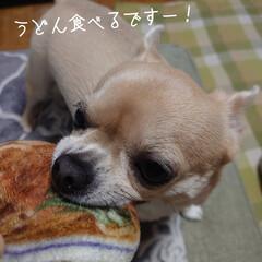 only one/電卓/300円商品/シール/お風呂用/ハル/... おはようございます٩(๑´O`๑)۶フワ…(6枚目)