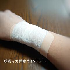 片付け/家の衣替え/おやつ/捻る おはようございます🍁 今日は東京最高気温…(1枚目)
