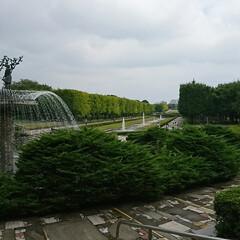 サイクリングコース/昭和記念公園 地元、国営公園へ🚲 まだ銀杏の色づきは先…