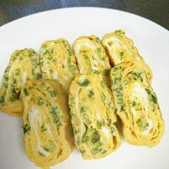 卵焼き/おかす/お弁当/鰹節/葱 いつものお弁当の卵焼き fumi4725…