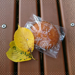 マスクメロン味/ソフトクリーム/お菓子 木工房を後にして、お昼を!と思ったのです…(1枚目)