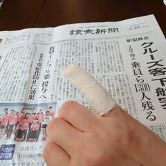 負傷/小指/巻沿い/ケンカ/親子喧嘩 おはようございます 地味に小指を痛めまし…