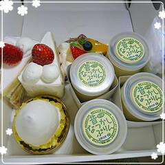 誕生日/小さなうさぎ/ケーキ/マカロン 昨日 私の好きなお店の💖大好きなマカロン…(2枚目)