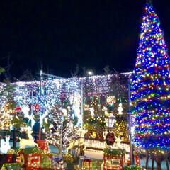 大任/道の駅/イルミネーション/クリスマス/クリスマスツリー/おでかけ 昨日は、イルミネーションを見に✨福岡県に…