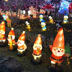 大任/道の駅/イルミネーション/クリスマス/クリスマスツリー/おでかけ 昨日は、イルミネーションを見に✨福岡県に…(6枚目)