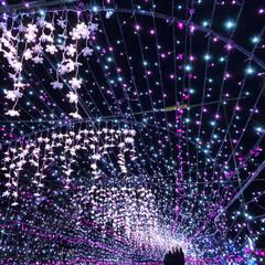 大任/道の駅/イルミネーション/クリスマス/クリスマスツリー/おでかけ 昨日は、イルミネーションを見に✨福岡県に…(3枚目)