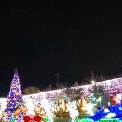 大任/道の駅/イルミネーション/クリスマス/クリスマスツリー/おでかけ 昨日は、イルミネーションを見に✨福岡県に…(2枚目)