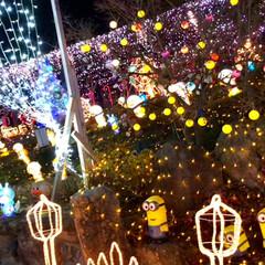 大任/道の駅/イルミネーション/クリスマス/クリスマスツリー/おでかけ 昨日は、イルミネーションを見に✨福岡県に…(8枚目)