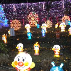 大任/道の駅/イルミネーション/クリスマス/クリスマスツリー/おでかけ 昨日は、イルミネーションを見に✨福岡県に…(7枚目)