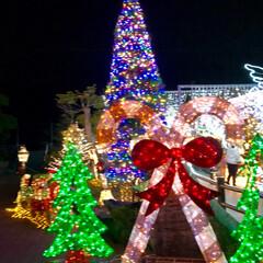 大任/道の駅/イルミネーション/クリスマス/クリスマスツリー/おでかけ 昨日は、イルミネーションを見に✨福岡県に…(10枚目)