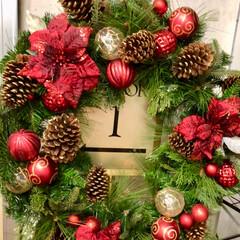 2018/クリスマス/クリスマスツリー/おでかけ/風景/グルメ/... 昨日の夜はお出かけ🎄 ディナービュッフェ…
