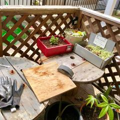 衣替え/DIY/掃除 ヤバイ❗️端材とヤスリうっかり手にしてし…