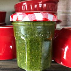 夏野菜/ソース/グルメ/フード/おうちごはん/節約 最近収穫した野菜でソース連発して作ってま…
