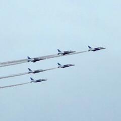 ブルーインパルス/航空祭/おでかけ おはようございます😊 先週は風邪🤧でダウ…