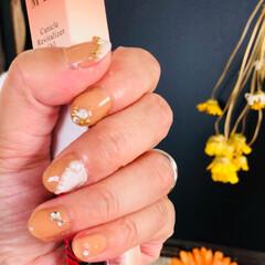 ジェルネイル/セルフネイル/100均/節約/ファッション/ハンドメイド 暑い💦とダラダラ過ごす中、爪塗り直してま…